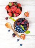 Вunch of wild berries and mint Royalty Free Stock Photo