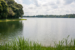 Upper Seletar Reservoir in Singapore Royalty Free Stock Images