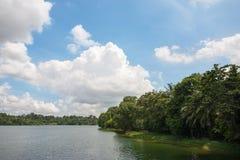 Upper Seletar Reservoir in Singapore Stock Image