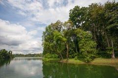 Upper Seletar Reservoir in Singapore Stock Images