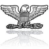 US Army eagle insignia Stock Image