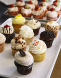 Variety of Cupcakes Royalty Free Stock Image