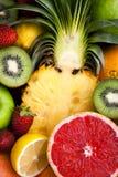 Variety of fruit Royalty Free Stock Photo