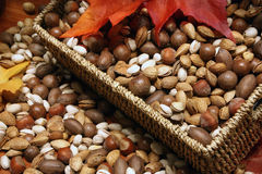 Variety of Nuts Stock Photography