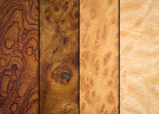 Variety wood textures Royalty Free Stock Image