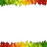 Vector background decorated with colorful autumn leaves Royalty Free Stock Image