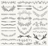 Vector Black Hand Drawn Dividers, Branches, Swirls Stock Image