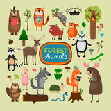 Vector forest animals Stock Photography