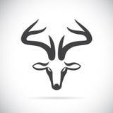Vector images of deer head Stock Photo