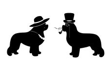 Vector Lady and Gentleman illustration with newfoundland dogs (for example as a WC signs) Royalty Free Stock Image