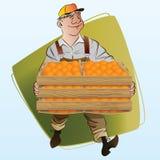 Vektorauf lagerabbildung Ernten Ein Mann sammelt Orangen Stockbild