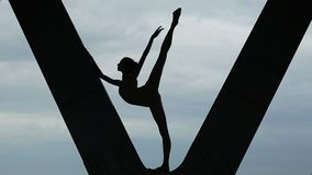 Video footage circuit fragile ballerina on a stock video footage