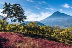 View of Agua Volcano outside Antigua, Guatemala Royalty Free Stock Image