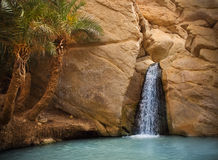 View of mountain oasis Chebika, Sahara desert, Tunisia, Africa Stock Photo