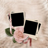 Vintage elegance background with photo-frames and rose Royalty Free Stock Photography