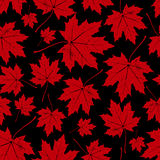 Vintage floral autumn (fall) seamless pattern with maple leaves Stock Image