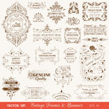 Vintage Frames and Banners, Calligraphic Elements Stock Photography
