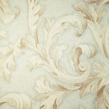 Vintage grey victorian wallpaper with beige baroque vignette Stock Photography