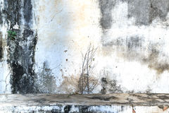 Vintage or grungy dirty white cement wall background, texture Royalty Free Stock Image