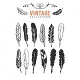 Vintage retro old nib pen feather ink collection. Royalty Free Stock Image