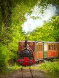Vintage steam train Royalty Free Stock Photo