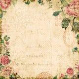 Vintage style botanical floral framed background Royalty Free Stock Photography
