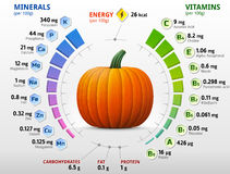 Vitamins and minerals of pumpkin Royalty Free Stock Photos