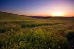 Vivid Sunset Stock Images