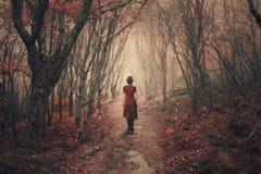 Vrouw en mistig bos. Royalty-vrije Stock Foto