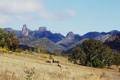 Warrumbungle National Park Autsralia Royalty Free Stock Photography