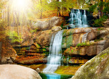 Waterfall. Autumn forest Royalty Free Stock Images