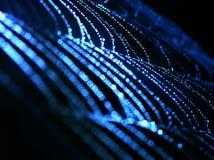 Web de aranha azul Foto de Stock