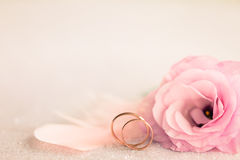 Wedding  Background with gold Rings, gentle flower and light pin Royalty Free Stock Images