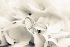 Wedding Rings with flowers Stock Images