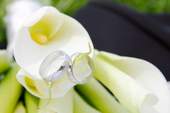 Wedding rings with flowers Stock Photos
