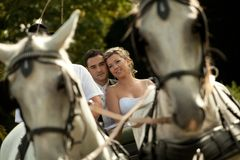 Wedding series, carriage Royalty Free Stock Images