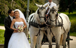 Wedding series, carriage Royalty Free Stock Photos