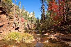 West Fork Oak Creek. Royalty Free Stock Image