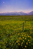 Western USA Landscape Royalty Free Stock Photography