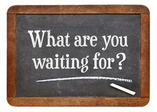 What are waiting for? Royalty Free Stock Image