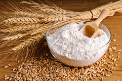 Wheat, grain and flour Royalty Free Stock Image