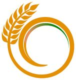 Wheat swirl Stock Images