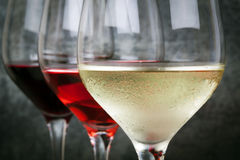 White Rose and Red Wine Royalty Free Stock Images