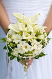 White wedding flowers in bride's hands Royalty Free Stock Photos