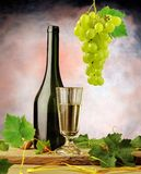 White wine arrangement Stock Image