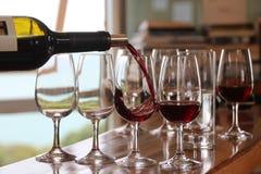 Wine tasting Royalty Free Stock Photo