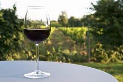 Wine and vineyard Stock Photography