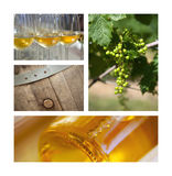 Wine and viticulture Stock Photos