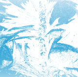 Winter Frost Background Royalty Free Stock Photo