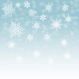 Winterschnee oder -schneeflocke Lizenzfreie Stockfotos